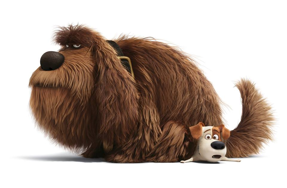 The Secret Life of Pets : Hilarious, Heartwarming and Inspiring movie