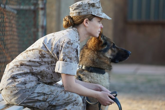 Megan Leavey : The biographical drama hits theaters this Friday