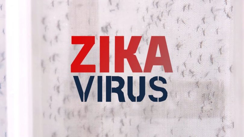 No need to afraid of Zika Virus if  ever had dengue in the past