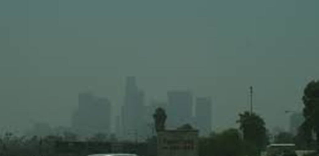 Air pollution: Diet to reduce the harmful effects of Smog