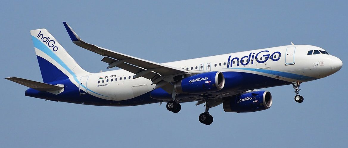 Indigo Flight  6E-742 delayed by 3 hours after hitting Wild Boar on runway