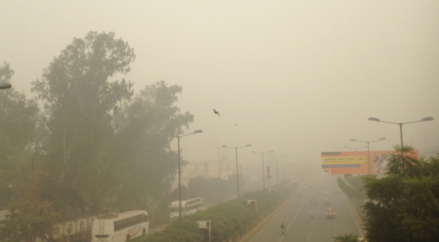 Delhi schools to remain shut until Sunday due to smog and high pollution levels