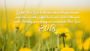 let this new year be the one where all your dreams come true so with the joyful heart put the start to this year a new wishing you happy and prosperous