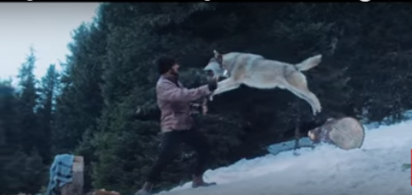 Tiger Zinda Hai still : Salman Khan deadly face off with pack of wolves
