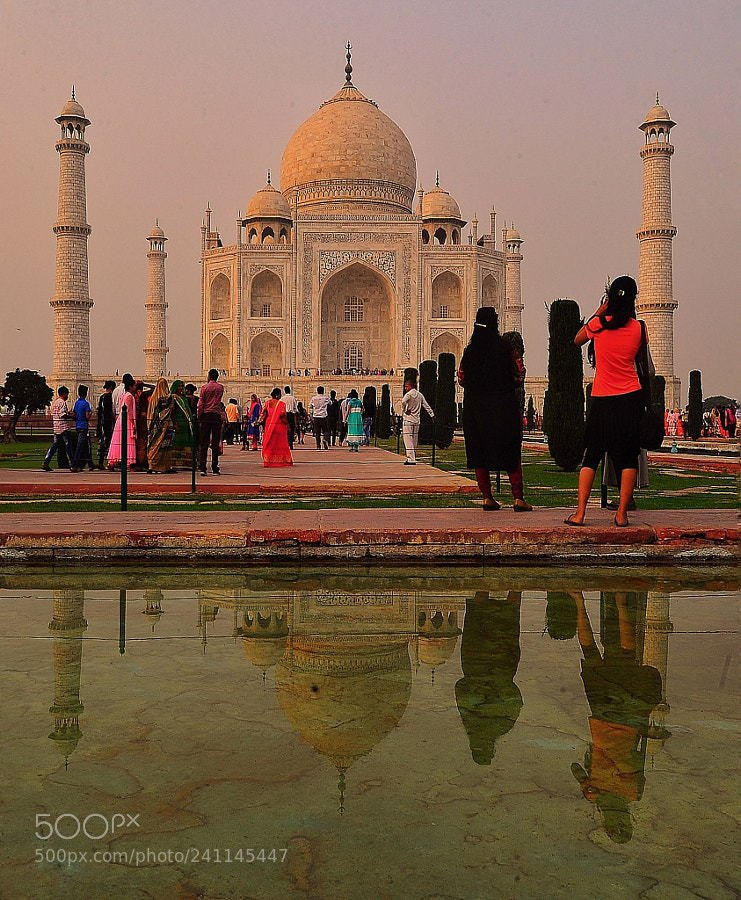 Taj Mahal: 40,000 limit for Indian tourists