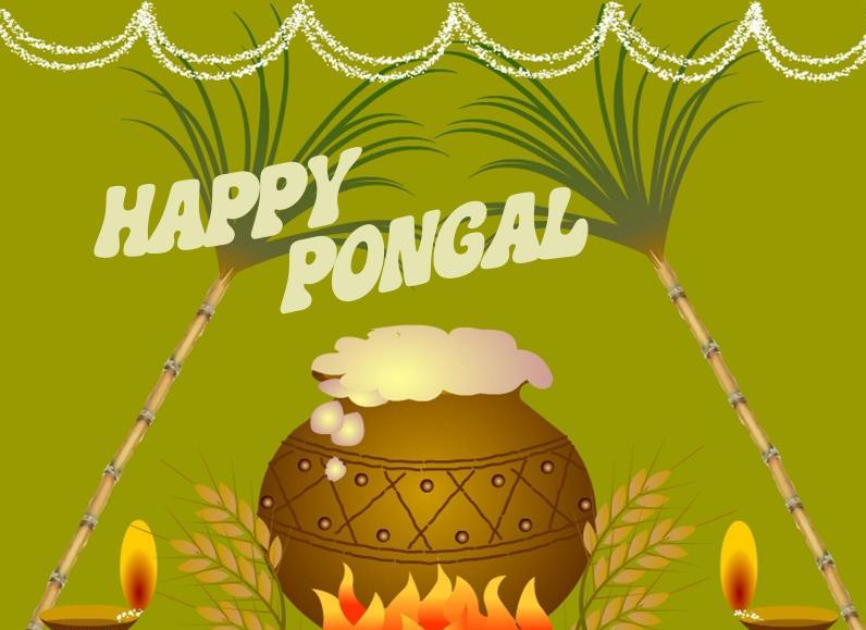 Pongal 2018: Date, Mahurat and Significant of the four days festival