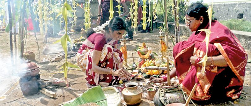 Pongal Festival 2018: Ritual and Traditions of South India