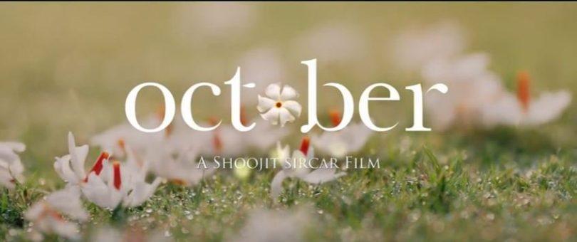October teaser, a first look at Shoojit Sircar's movie, starring Varun Dhawan