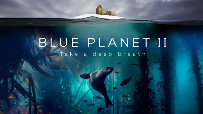 Blue Planet II movie review: Expedition at the most crucial time in Ocean's history