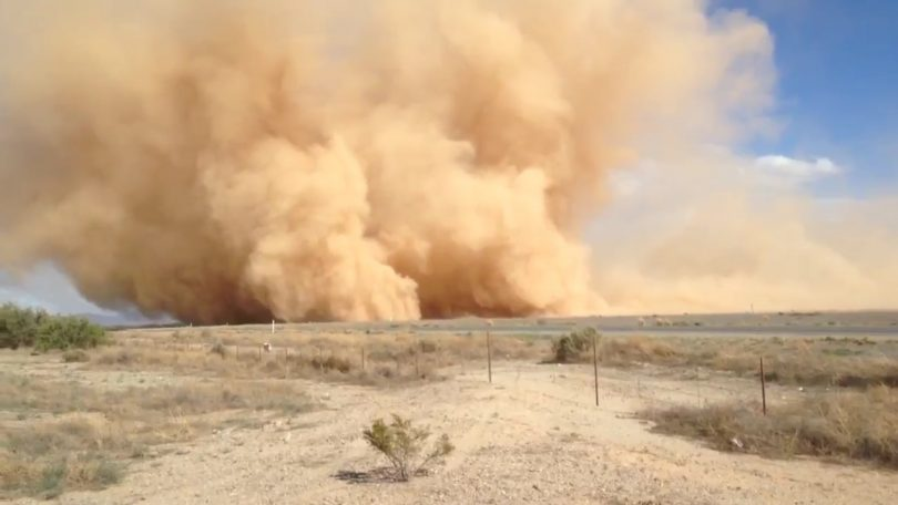 Sand storm hits Rajasthan, several border districts affected