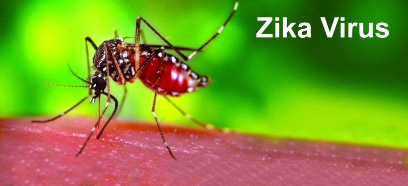 PMO seeks report from Health Ministry as Zika virus outbreaks in Rajasthan