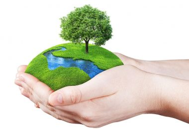 World environment day 2020 : Theme significance and History revisited on earth day